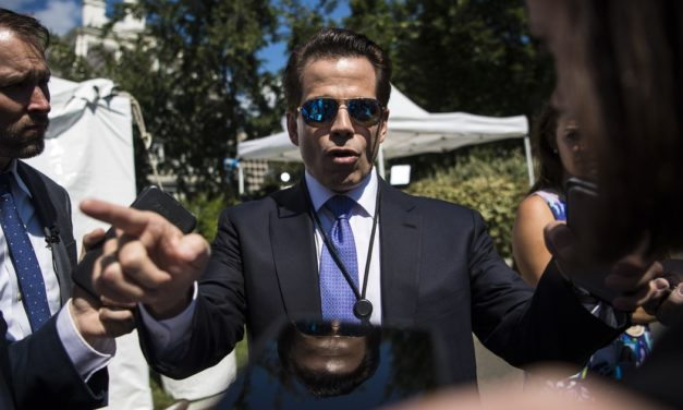 Scaramucci goes bananas in a call to The New Yorker